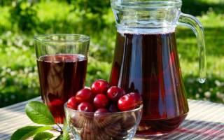 Наливка из вишни в домашних условиях простой рецепт без водки