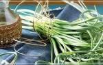 Чесночный настой из стрелок чеснока от паутинного клеща рецепт