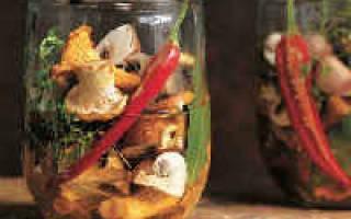 Рецепт засолки лисичек на зиму в банках