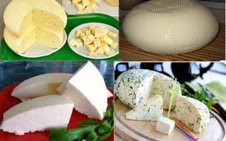 Сыр из молока в домашних условиях рецепт