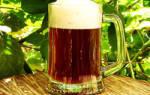 Приготовление пива в домашних условиях классический рецепт