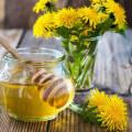 Мёд из одуванчиков в домашних условиях рецепт с фото