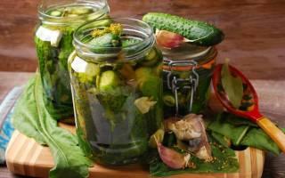 Консервированные огурцы хрустящие рецепт самые вкусные на 1 литр